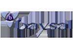 baysal_logo